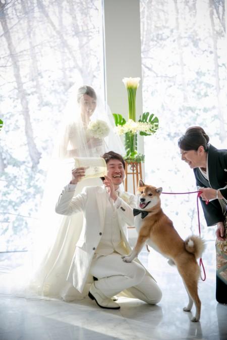 ペットと結婚式