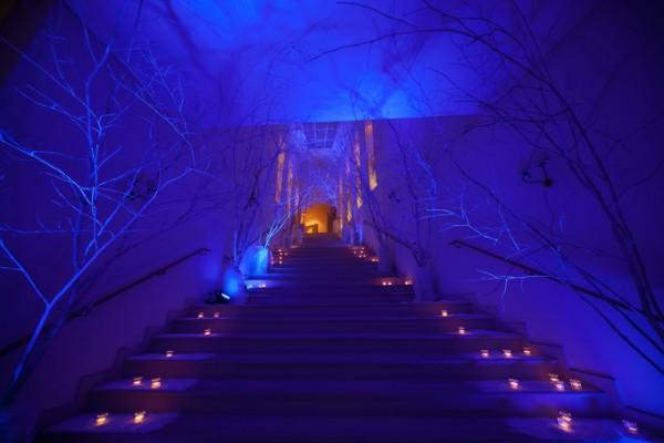 結婚式のディスプレイ|ジャルダンドゥボヌール